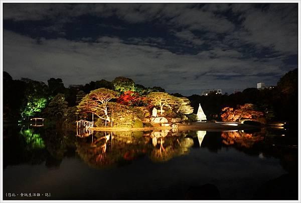六義園-夜楓-20.JPG