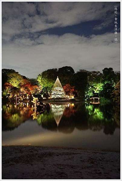 六義園-夜楓-23.JPG