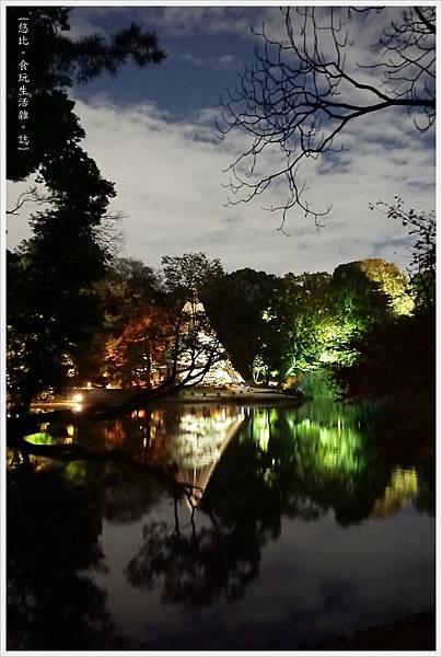 六義園-夜楓-24.JPG