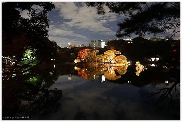 六義園-夜楓-26.JPG