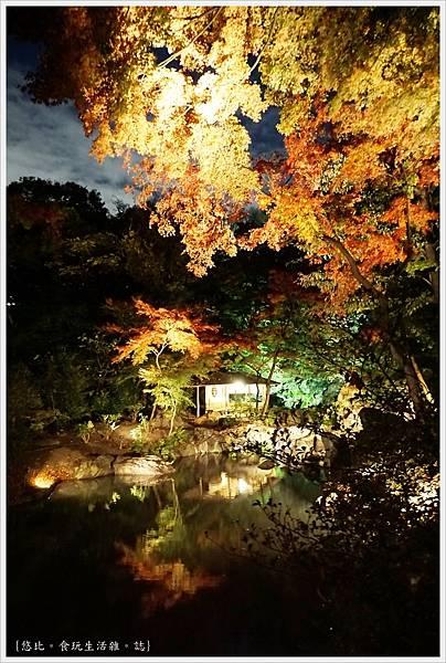六義園-夜楓-27.JPG