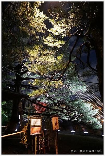 六義園-夜楓-29.JPG