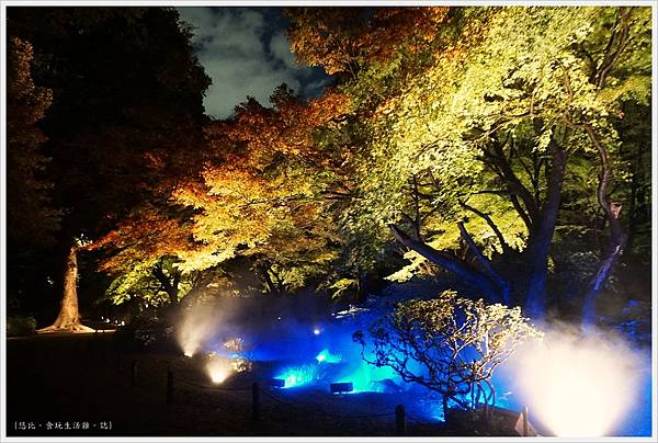 六義園-夜楓-32.JPG