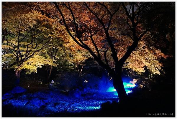 六義園-夜楓-35.JPG