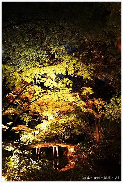 六義園-夜楓-37.JPG