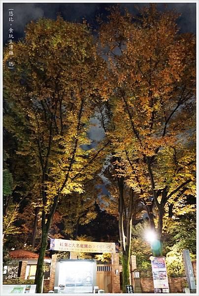 六義園-夜楓-46.JPG