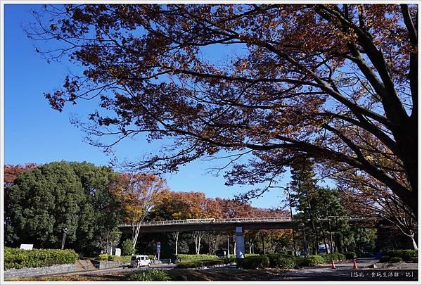 代代木公園-4-外圍.JPG