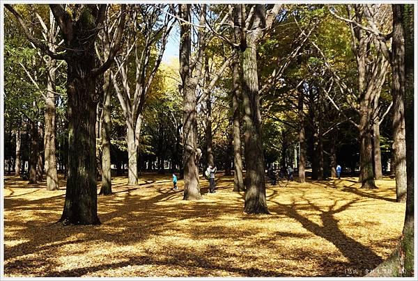 代代木公園-11.JPG