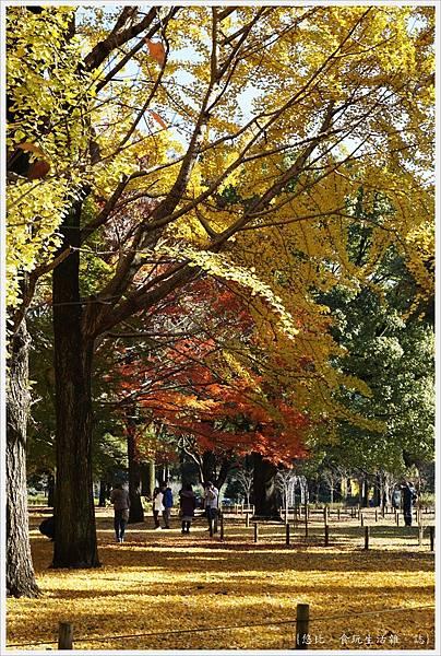 代代木公園-14.JPG