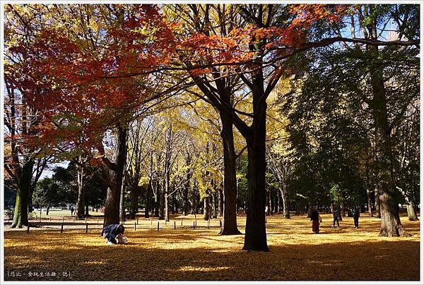 代代木公園-17.JPG