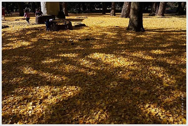 代代木公園-23.JPG