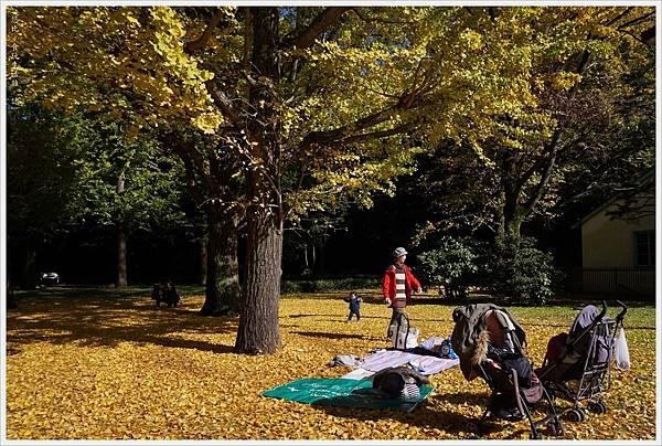 代代木公園-22.JPG