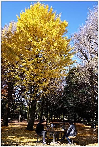 代代木公園-21.JPG