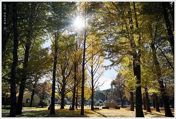 代代木公園-24.JPG