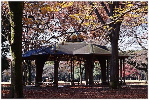 代代木公園-28.JPG