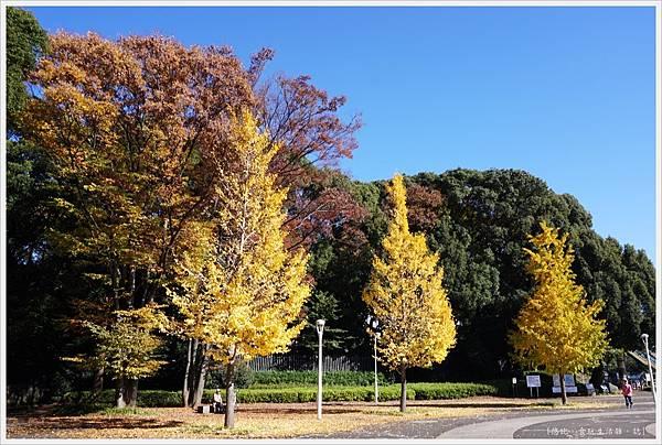代代木公園-35.JPG