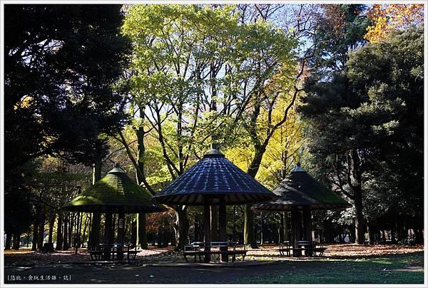 代代木公園-34.JPG