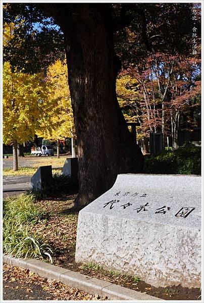 代代木公園-36.JPG