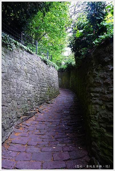 海德堡-舊城區-54-蛇徑.JPG