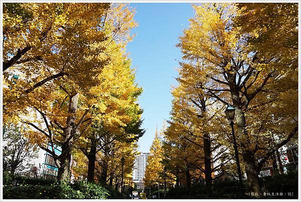 人形町-34-濱町公園.JPG