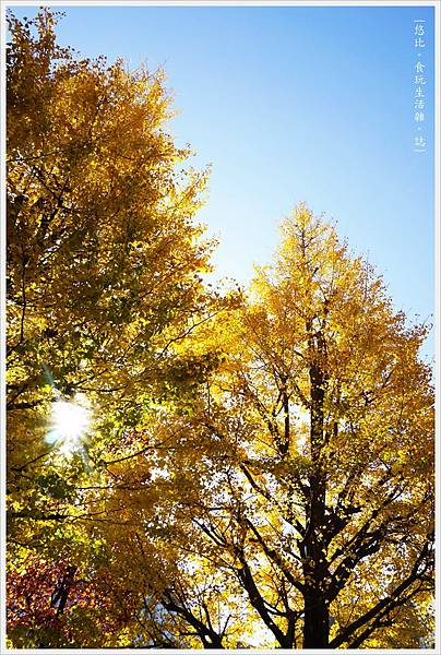 人形町-35-濱町公園.JPG