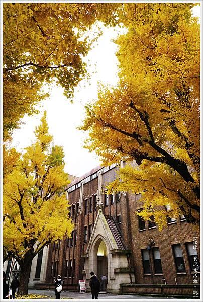 東大-45-銀杏.JPG