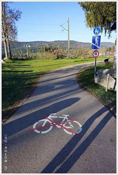 施盧赫湖-18-Schluchsee.JPG