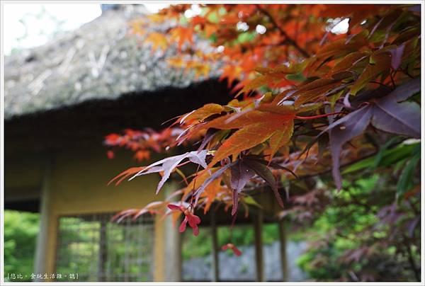 精華町-70-京阪奈紀念公園水景園.JPG