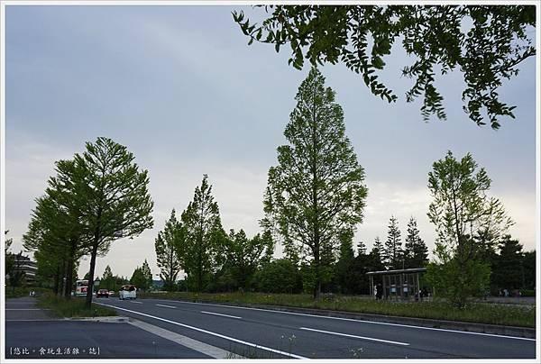 精華町-105-京阪奈紀念公園.JPG
