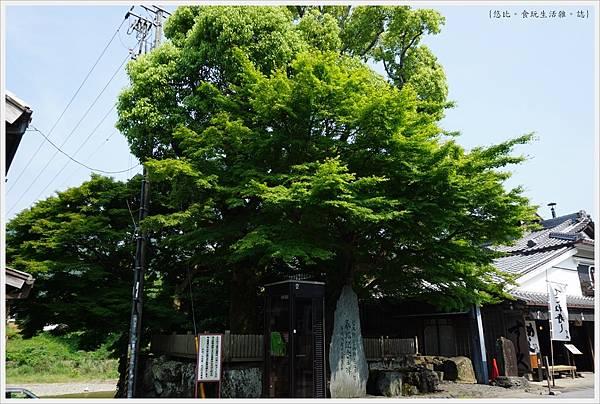 托福橫丁-42-奉祀紀念碑.JPG