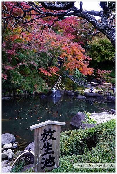 鎌倉-149-長谷寺.JPG