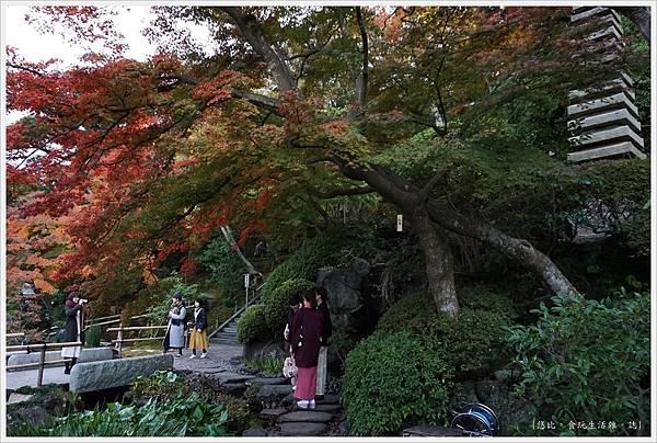鎌倉-166-長谷寺.JPG