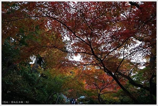 鎌倉-206-長谷寺.JPG