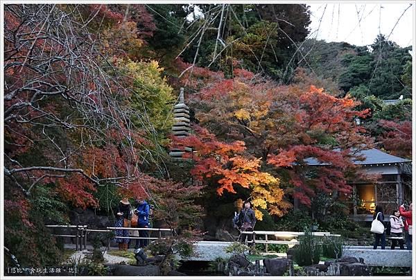 鎌倉-216-長谷寺.JPG