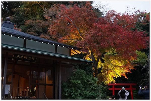 鎌倉-217-長谷寺.JPG
