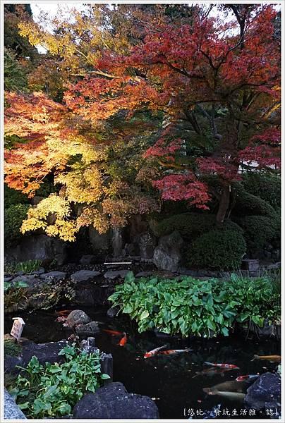 鎌倉-218-長谷寺.JPG