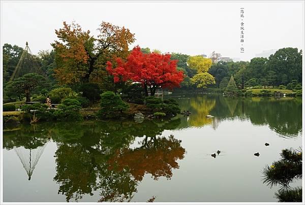 清澄庭園-48.JPG