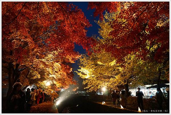 紅葉迴廊-紅葉祭-夜楓-13.JPG