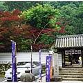 奈良長谷寺-32.JPG