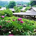 奈良長谷寺-50.JPG