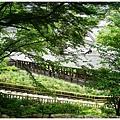 奈良長谷寺-61.JPG