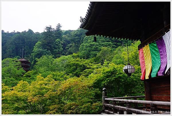 奈良長谷寺-115-本堂.JPG