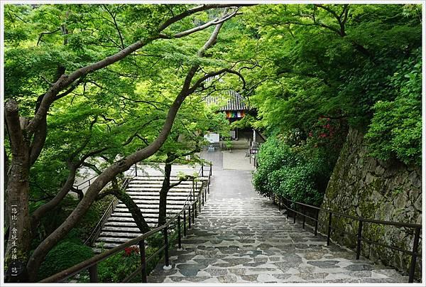 奈良長谷寺-124-本堂.JPG