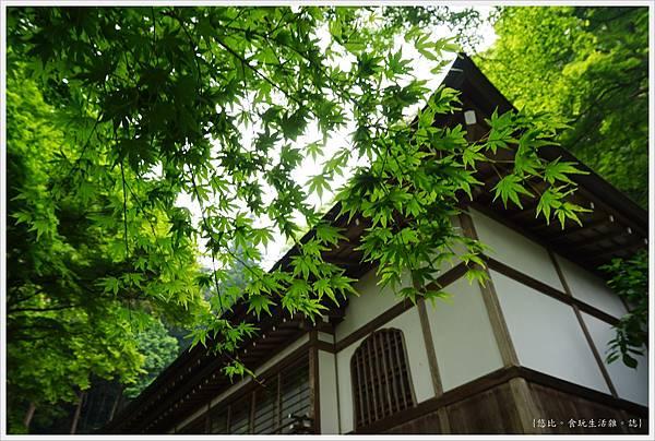 奈良長谷寺-128-楓葉.JPG