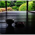 慈光院-35-庭園.JPG