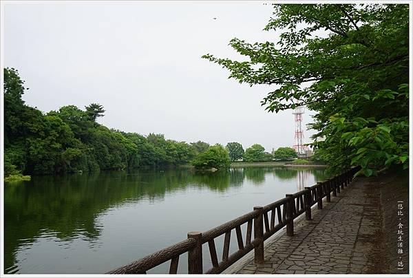 郡山城跡-20-鰻堀池.JPG