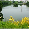 郡山城跡-21-鰻堀池.JPG