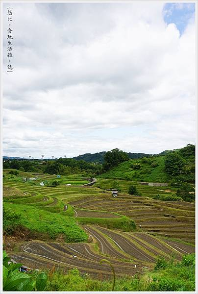 富田林-19-千早赤阪村梯田.JPG