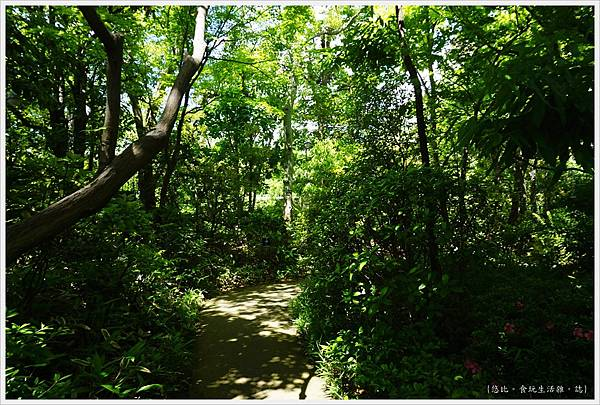 司馬遼太郎紀念館-9-庭院.JPG