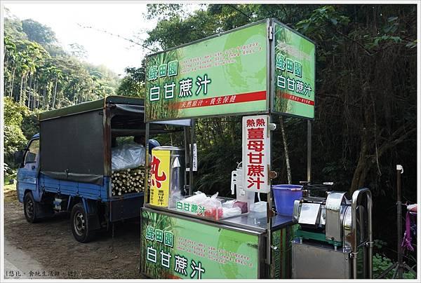 三灣落雨松-5.JPG